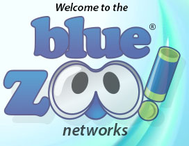 Blue Zoo Networks